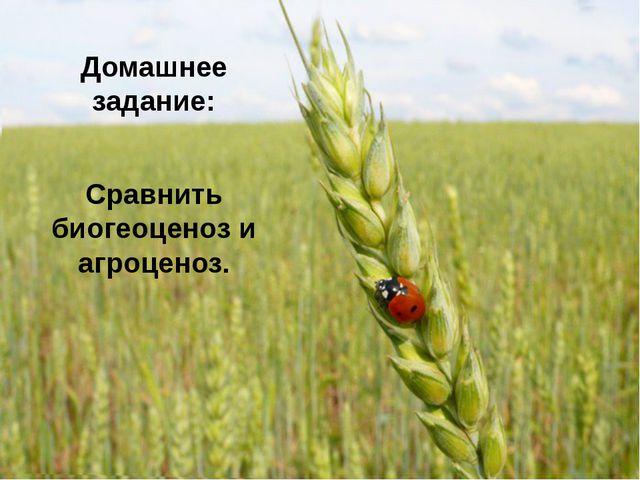 Домашнее задание: Сравнить биогеоценоз и агроценоз.
