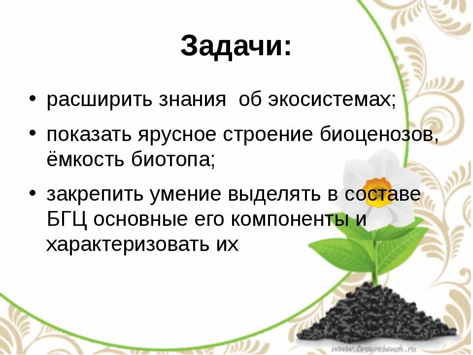 Задачи: расширить знания об экосистемах; показать ярусное строение биоценозов...