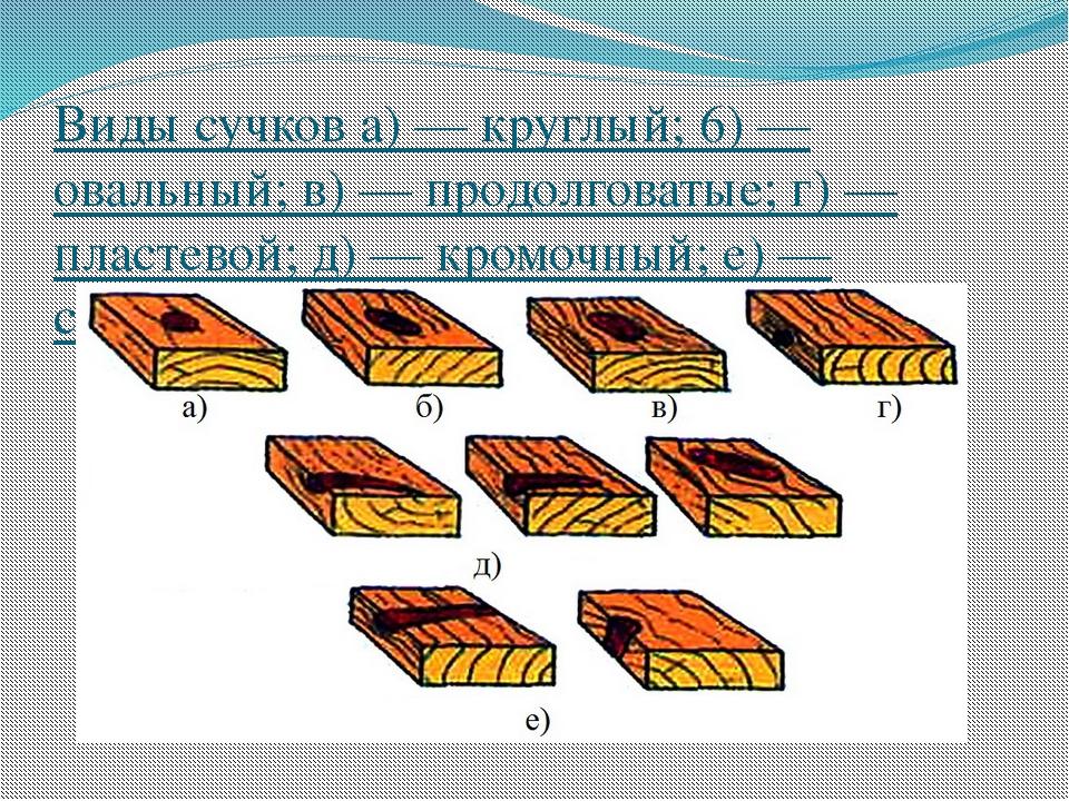 Виды сучков а) — круглый; 6) — овальный; в) — продолговатые; г) — пластевой;...