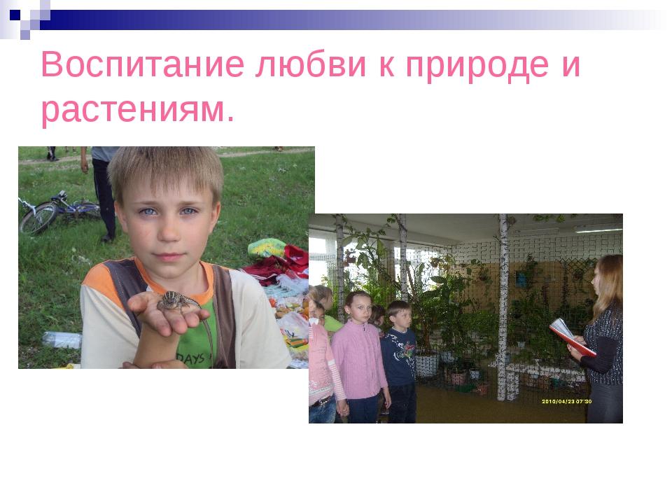 Воспитание любви к природе и растениям.
