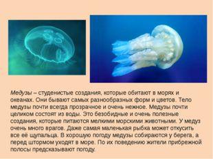 Медузы – студенистые создания, которые обитают в морях и океанах. Они бывают