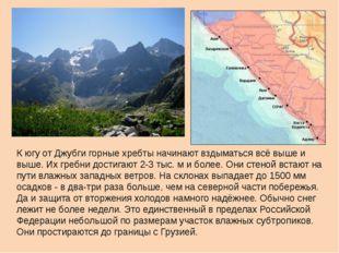 К югу от Джубги горные хребты начинают вздыматься всё выше и выше. Их гребни