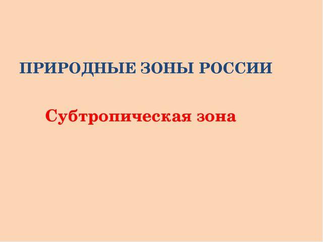 ПРИРОДНЫЕ ЗОНЫ РОССИИ Субтропическая зона