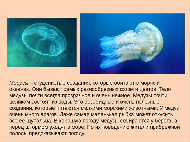 Медузы – студенистые создания, которые обитают в морях и океанах. Они бывают...