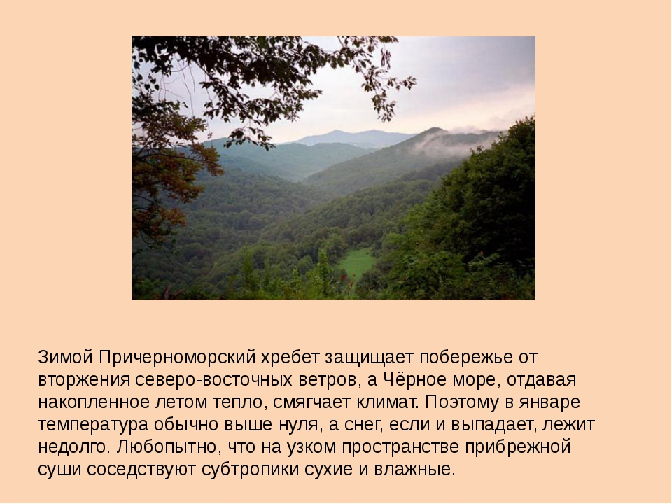 Зимой Причерноморский хребет защищает побережье от вторжения северо-восточных...