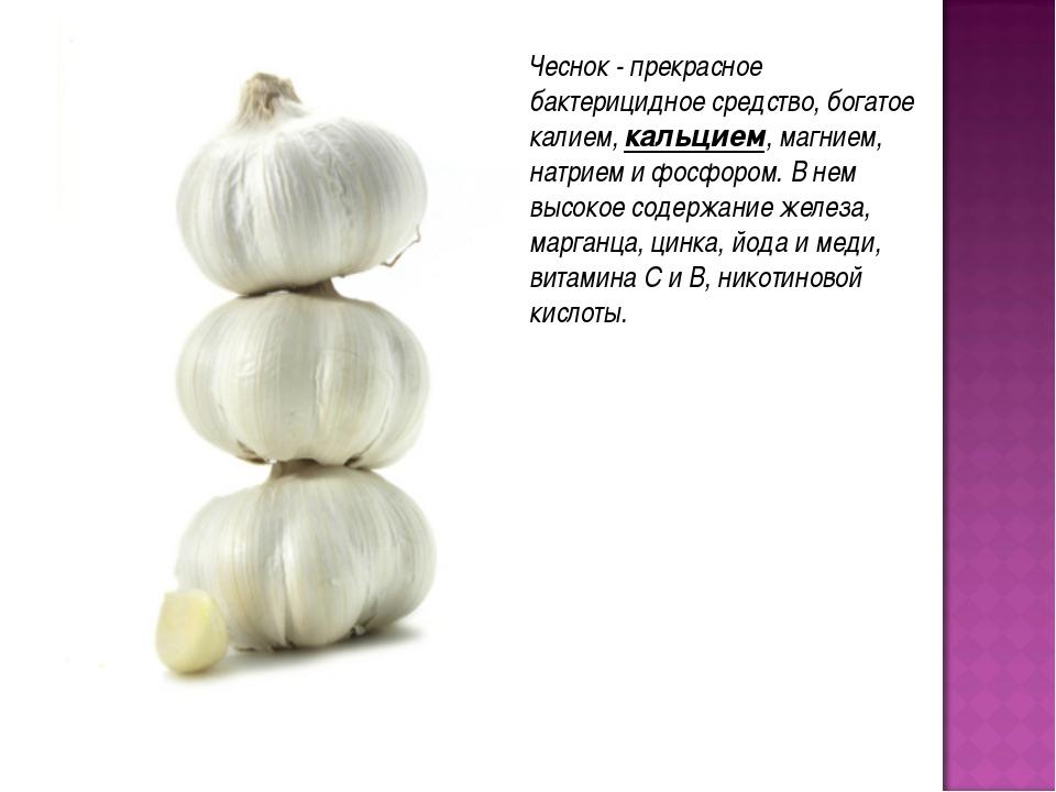 Чеснок - прекрасное бактерицидное средство, богатое калием, кальцием, магнием...