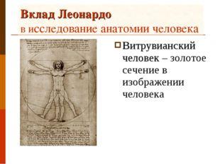 Вклад Леонардо в исследование анатомии человека Витрувианский человек – золот
