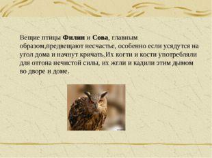 Вещие птицы Филин и Сова, главным образом,предвещают несчастье, особенно если