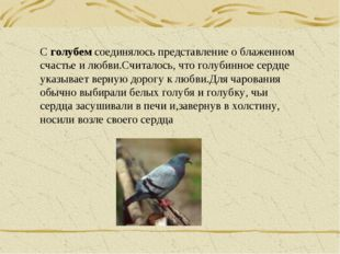 С голубем соединялось представление о блаженном счастье и любви.Считалось, чт