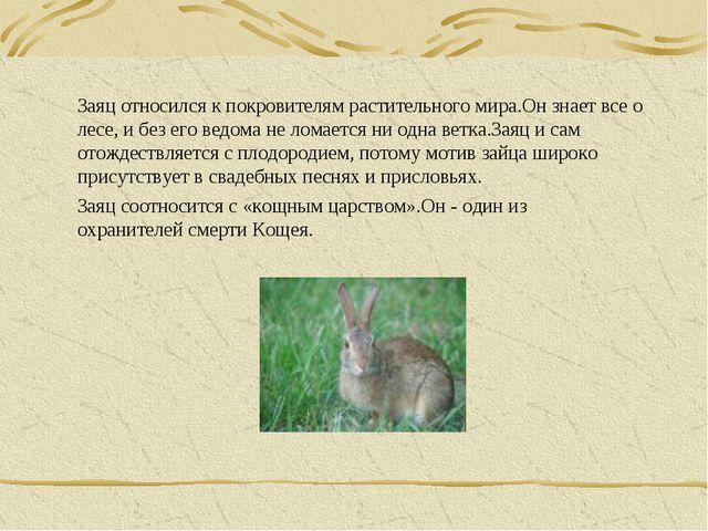 Заяц относился к покровителям растительного мира.Он знает все о лесе, и без е...