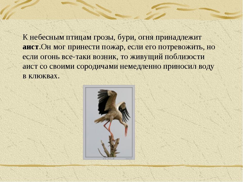 К небесным птицам грозы, бури, огня принадлежит аист.Он мог принести пожар, е...