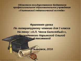Областное государственное бюджетное профессиональное образовательное учрежде