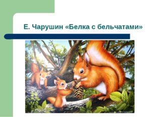 Е. Чарушин «Белка с бельчатами»