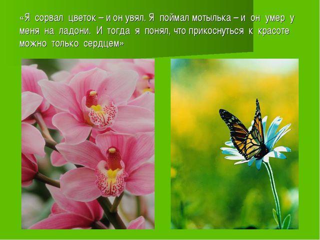 «Я сорвал цветок – и он увял. Я поймал мотылька – и он умер у меня на ладони....