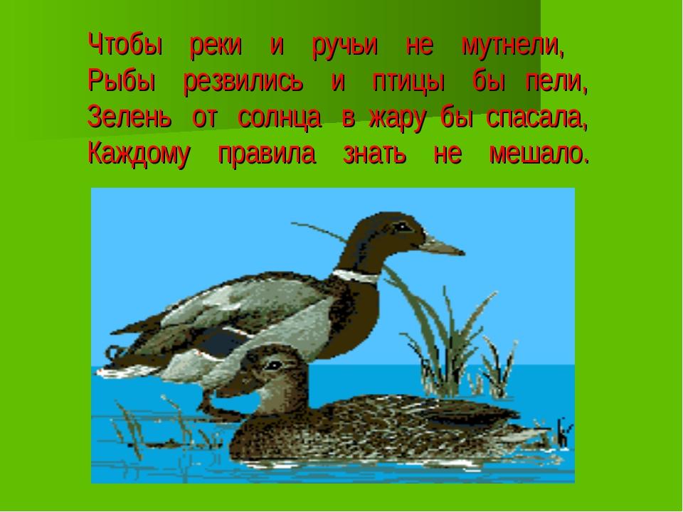 Чтобы реки и ручьи не мутнели, Рыбы резвились и птицы бы пели, Зелень от солн...