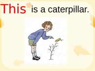is a caterpillar. This