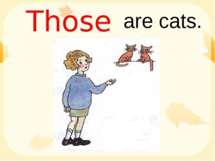 are cats. Those