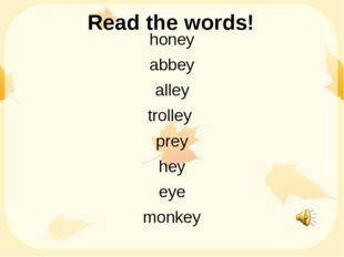 Read the words! honey abbey alley trolley prey hey eye monkey