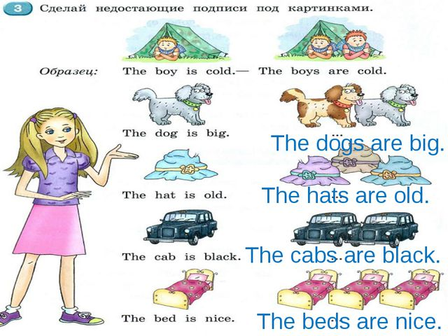 The cabs are black. The hats are old. The dogs are big. The beds are nice.
