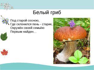 Белый гриб Под старой сосною, Где склонился пень - старик, Окружён своей семь