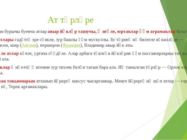 рассказ алмачуар на русском