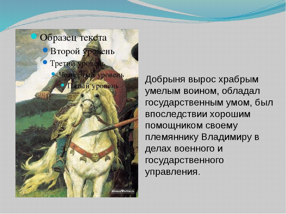 Добрыня вырос храбрым умелым воином, обладал государственным умом, был впосле...