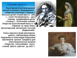Под покровительством великой княгини Елизаветы Маврикиевны - Общество попечен