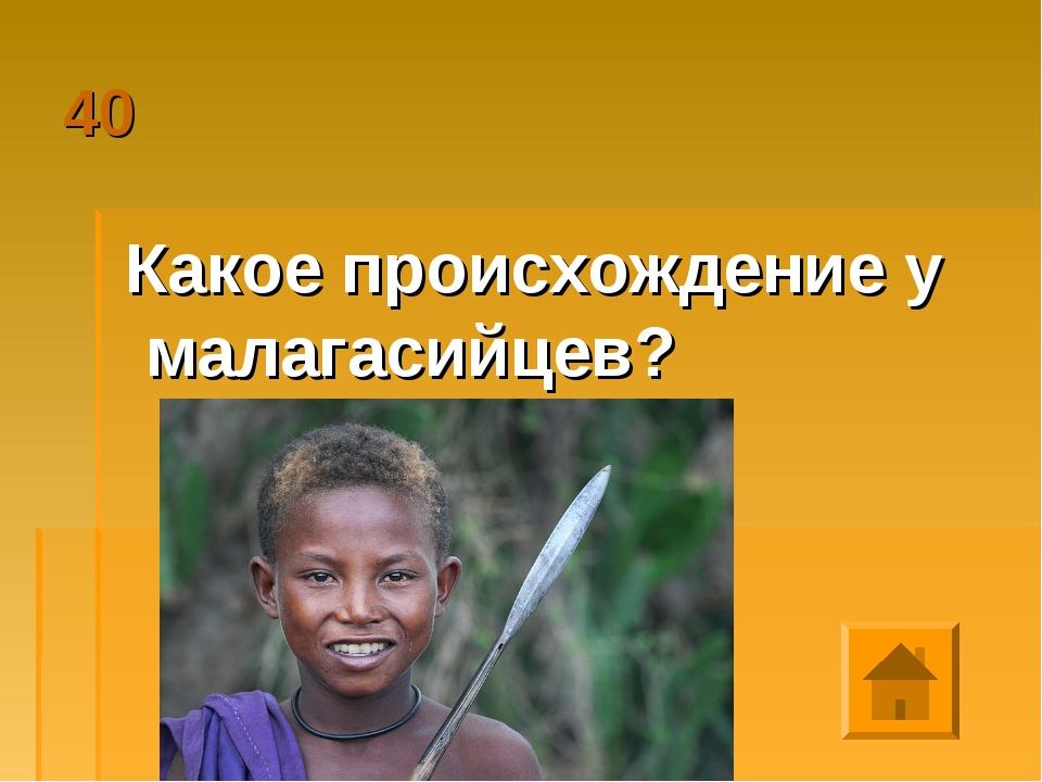 40 Какое происхождение у малагасийцев?