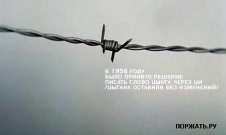 http://f.mypage.ru/6f4280716bbd9e0b238eec94e4bc65d8_0520ee8602de7535bb66371f0331541b.jpg