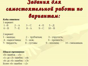 Задания для самостоятельной работы по вариантам: Коды ответов: 1 вариант: 1 –