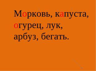 Морковь, капуста, огурец, лук, арбуз, бегать.