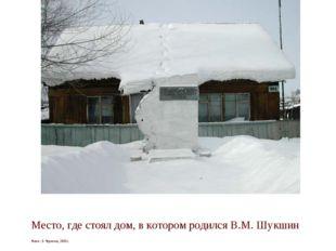 Место, где стоял дом, в котором родился В.М. Шукшин Фото: Э. Черкасов, 2003 г.
