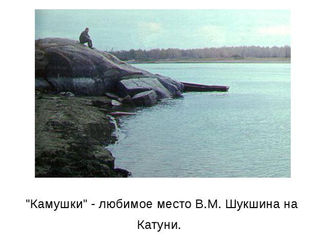 """Камушки"" - любимое место В.М.Шукшина на Катуни."