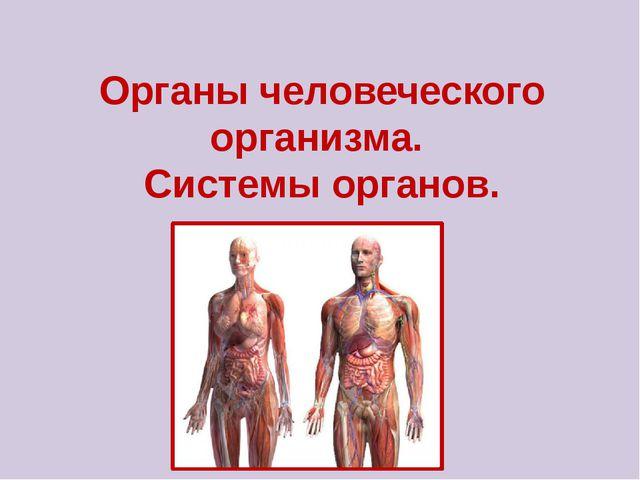 Органы человеческого организма. Системы органов.
