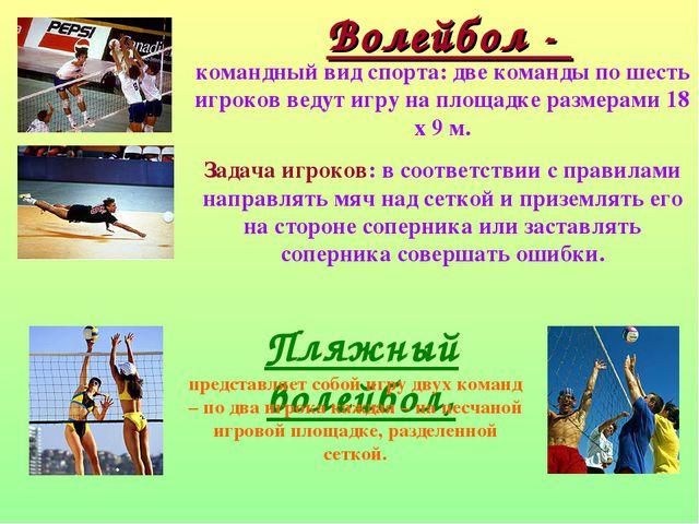 Волейбол - командный вид спорта: две команды по шесть игроков ведут игру на п...