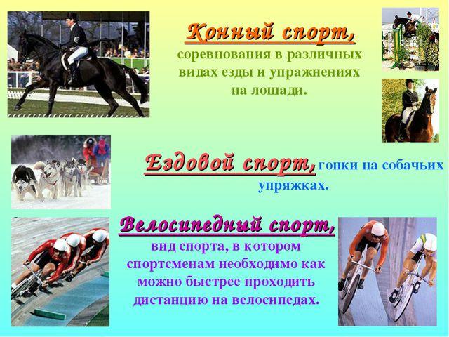 Конный спорт, соревнования в различных видах езды и упражнениях на лошади. Ез...
