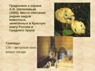 Предложен к охране А.И. Шепелевым (1989). Место обитания редких видов животн