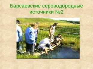 Барсаевские сероводородные источники №2