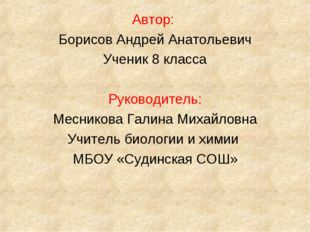 Автор: Борисов Андрей Анатольевич Ученик 8 класса Руководитель: Месникова Гал