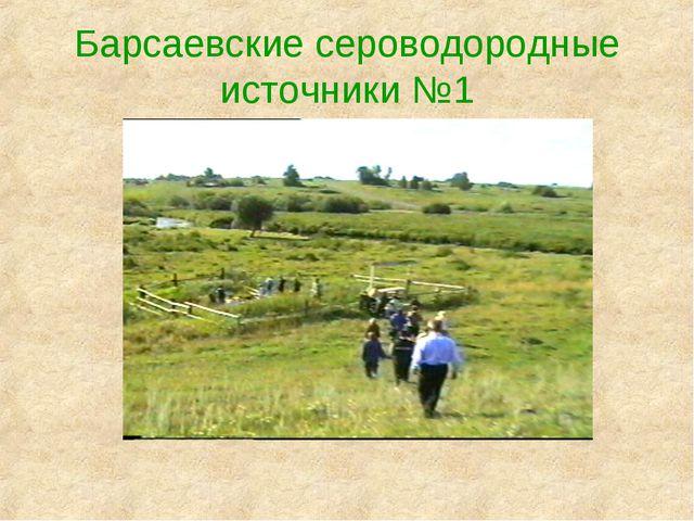 Барсаевские сероводородные источники №1