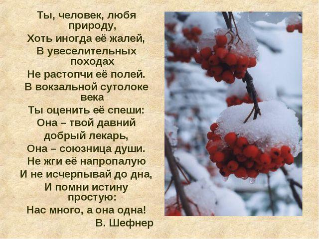 Ты, человек, любя природу, Хоть иногда её жалей, В увеселительных походах Не...