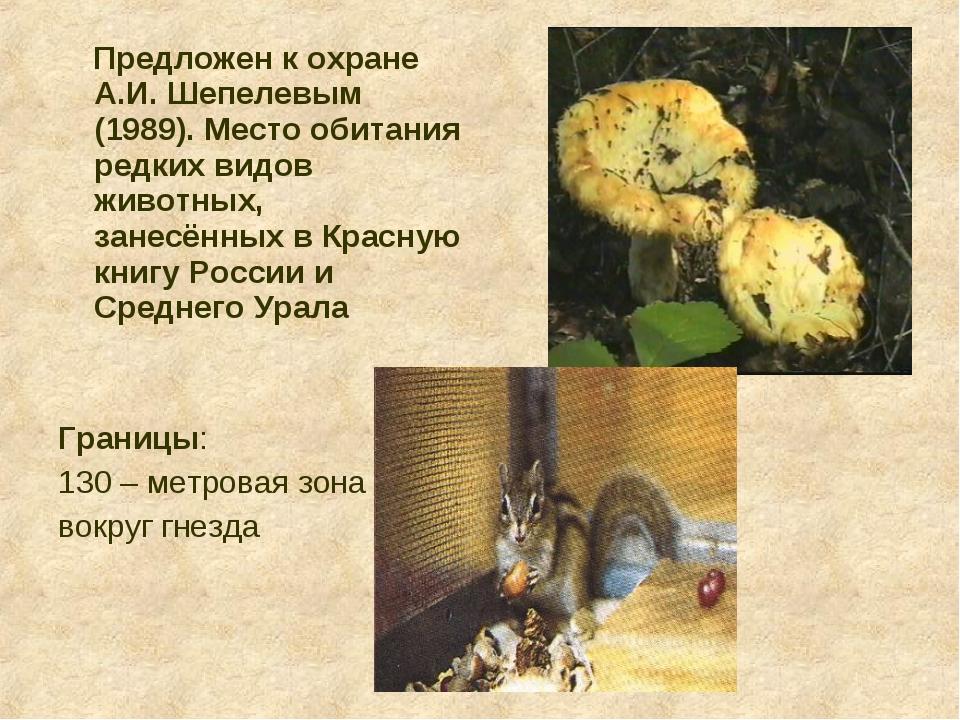 Предложен к охране А.И. Шепелевым (1989). Место обитания редких видов животн...