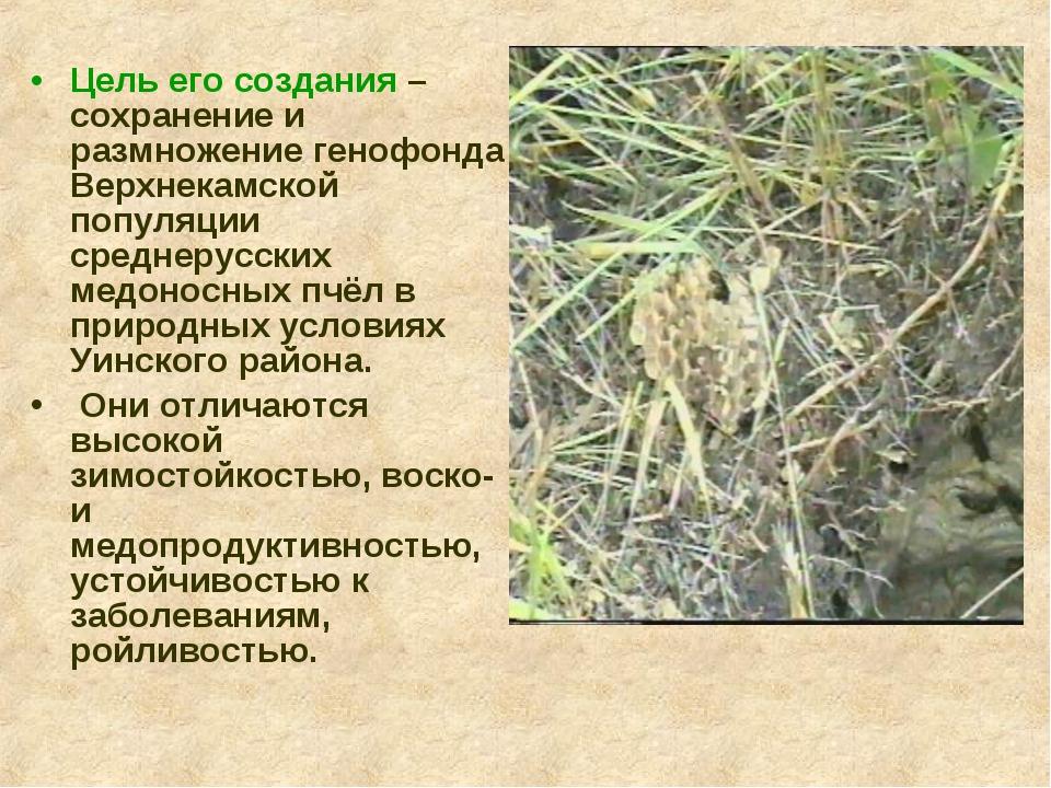 Цель его создания – сохранение и размножение генофонда Верхнекамской популяци...
