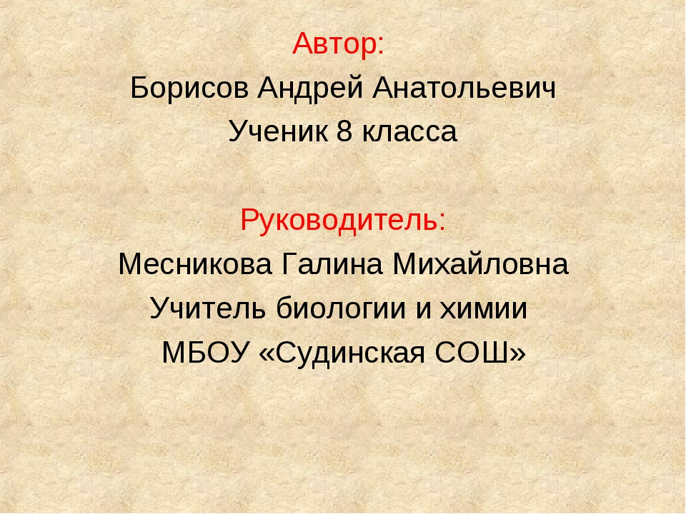 Автор: Борисов Андрей Анатольевич Ученик 8 класса Руководитель: Месникова Гал...