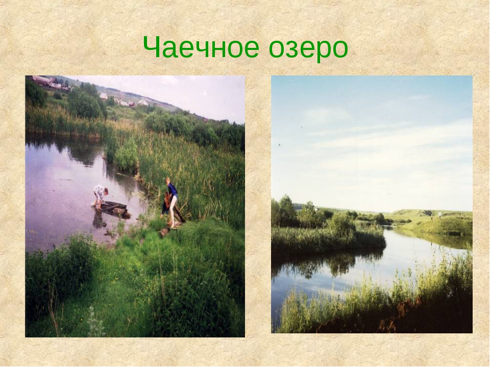 Чаечное озеро
