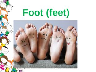 Foot (feet)