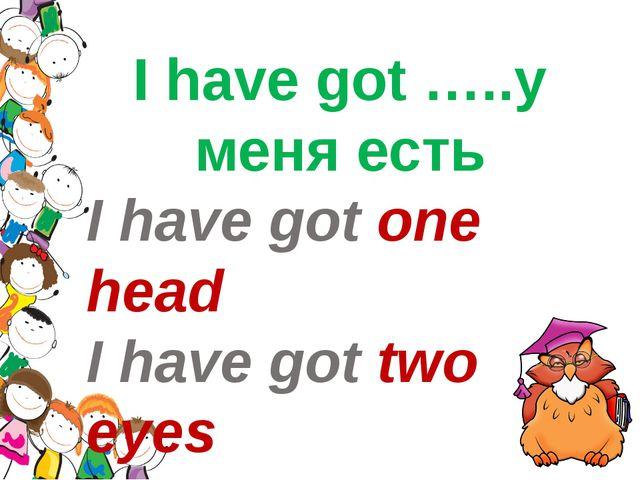 I have got …..у меня есть I have got one head I have got two eyes