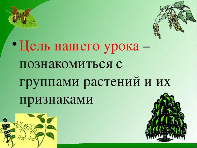 Цель нашего урока– познакомиться с группами растений и их признаками