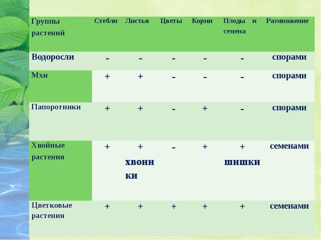 Группы растений Стебли Листья Цветы Корни  Плоды и семена Размножение Водоро...