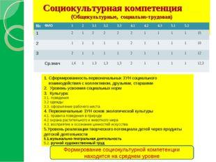 Социокультурная компетенция (Общекультурные, социально-трудовая) 1. Сформиро